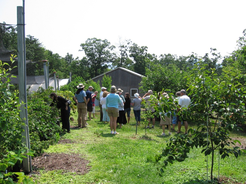 Edible Landscaping About Us